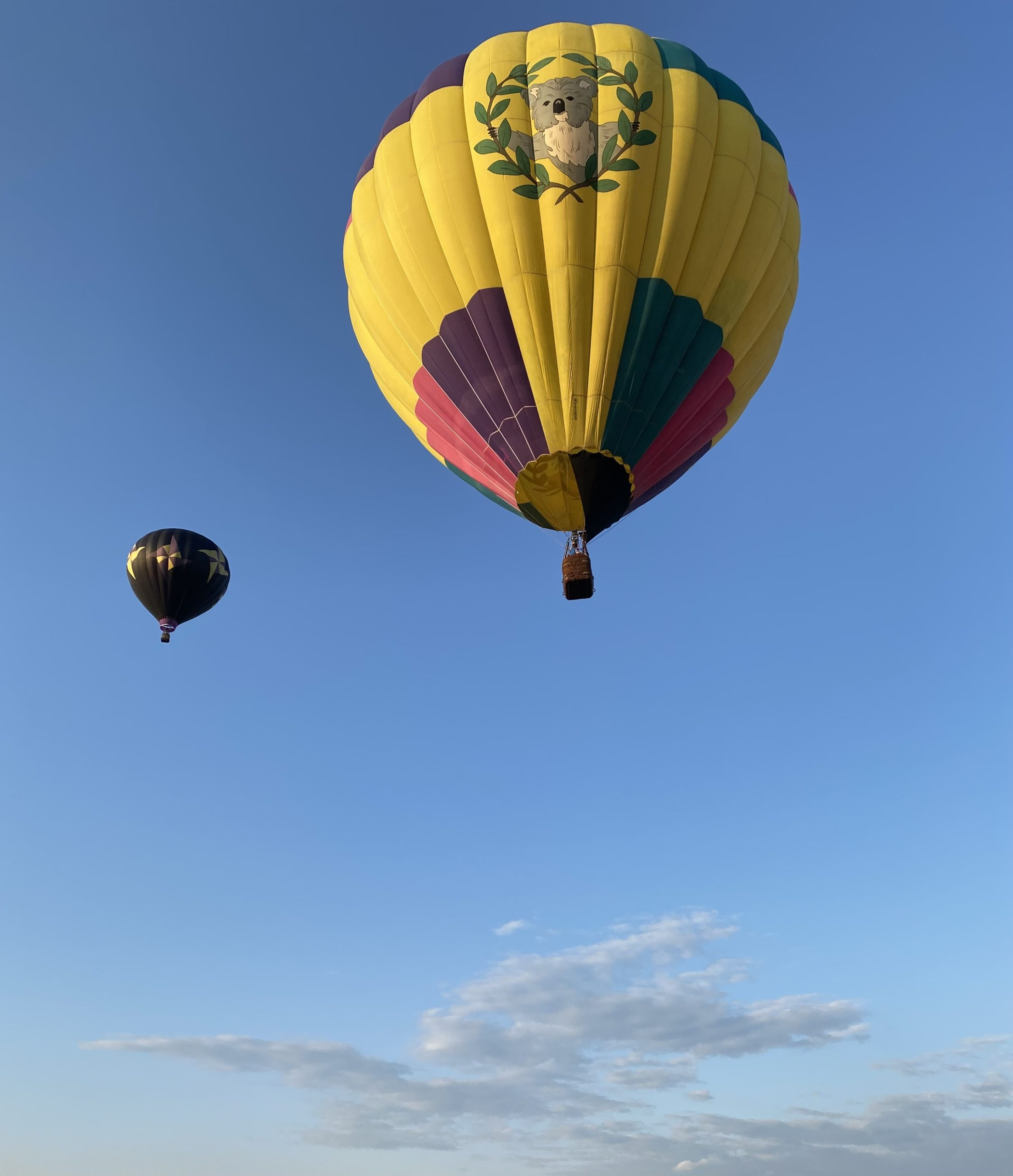 date ideas in nj hot air balloon new jersey